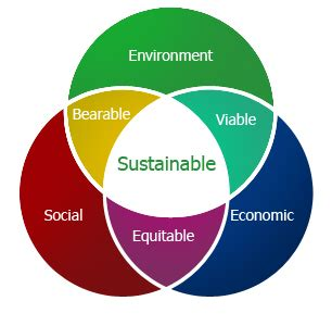 Sustainability and Reporting Trends in 2025 Preparing